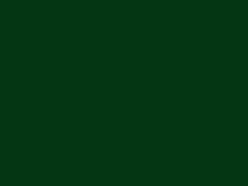 Vijak sa šestougaonom.glavom za drvo u boji ral 6005 Zelena